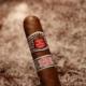 Die Hoyo de Monterrey Epicure Special ist eine beliebte Zigarre aus der Hoyo Familie
