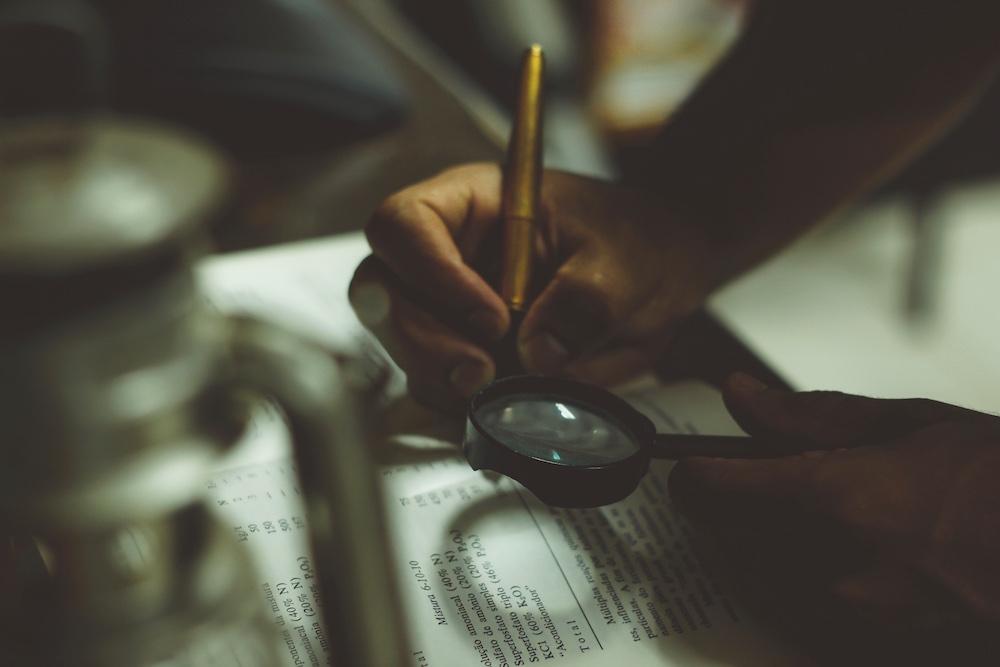 WordPress Datenbank anpassen mit Search and Replace PHP Skript anpassen und Einträge verändern