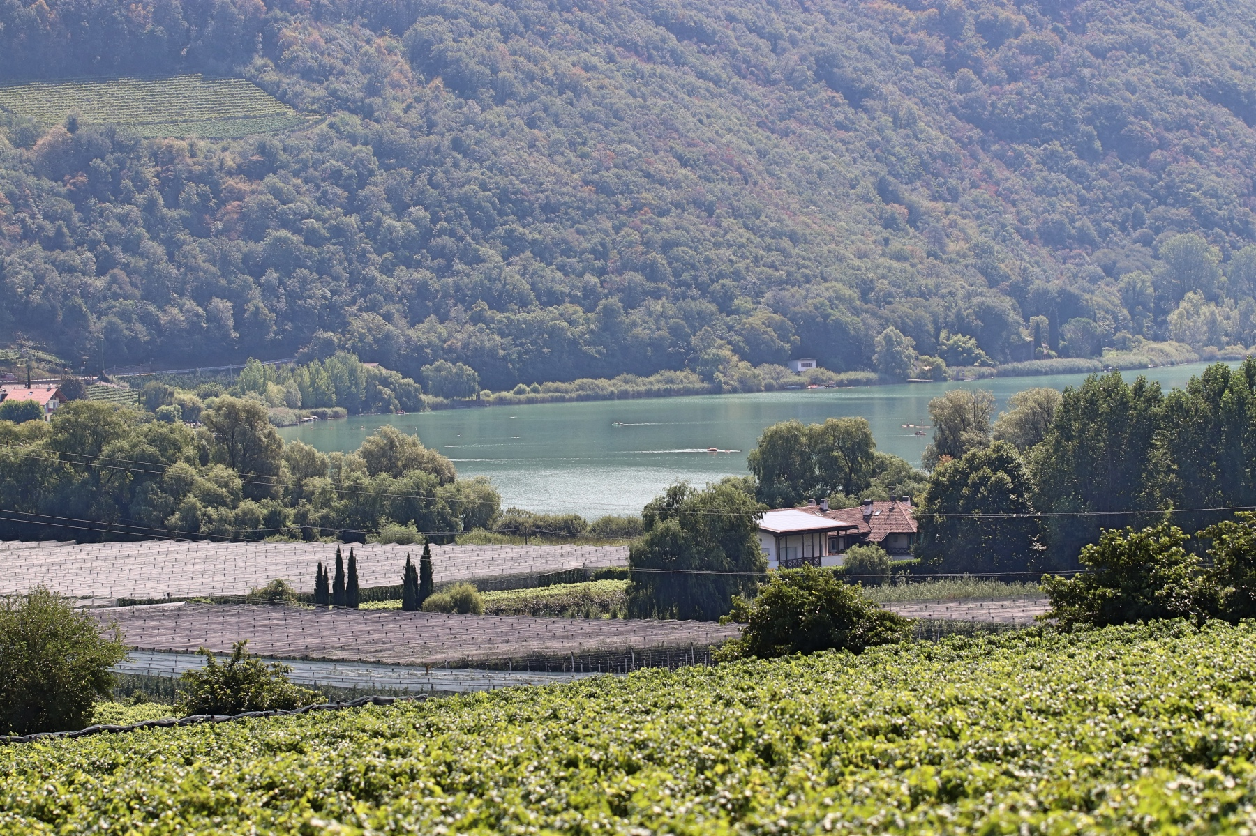 Weinregion Kaltern am See