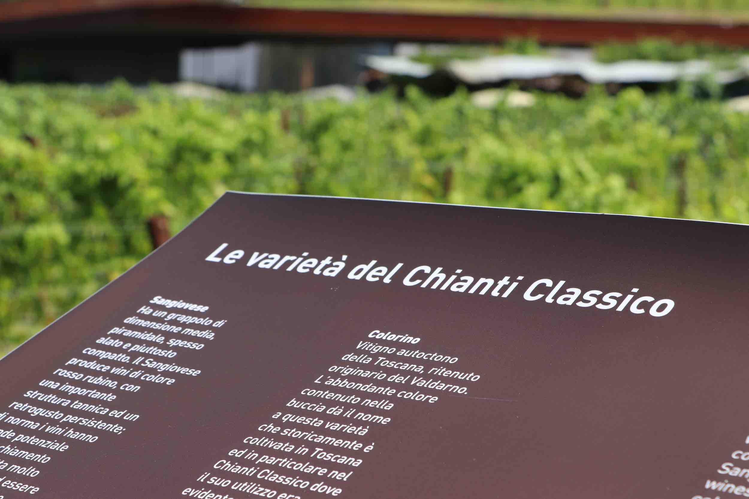 Chianti-Classico-Antinori
