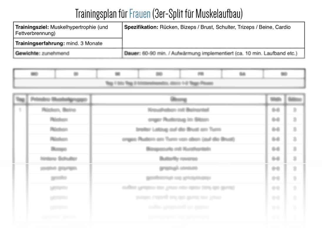 3er Split Trainingsplan für Frauen (PDF Vorschau)