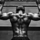 Muskelabbau und Muskelaufbau nach langer Trainingspause