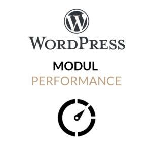 Das WordPress Performance-Modul für schnellere WordPress-Webseiten und optimierte Ladezeit
