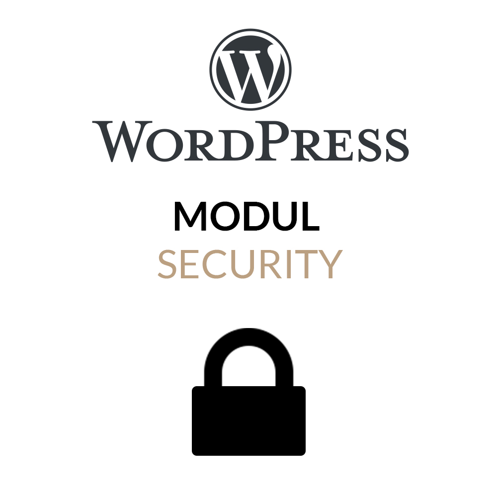 WordPress Security Modul für mehr Webseitensicherheit