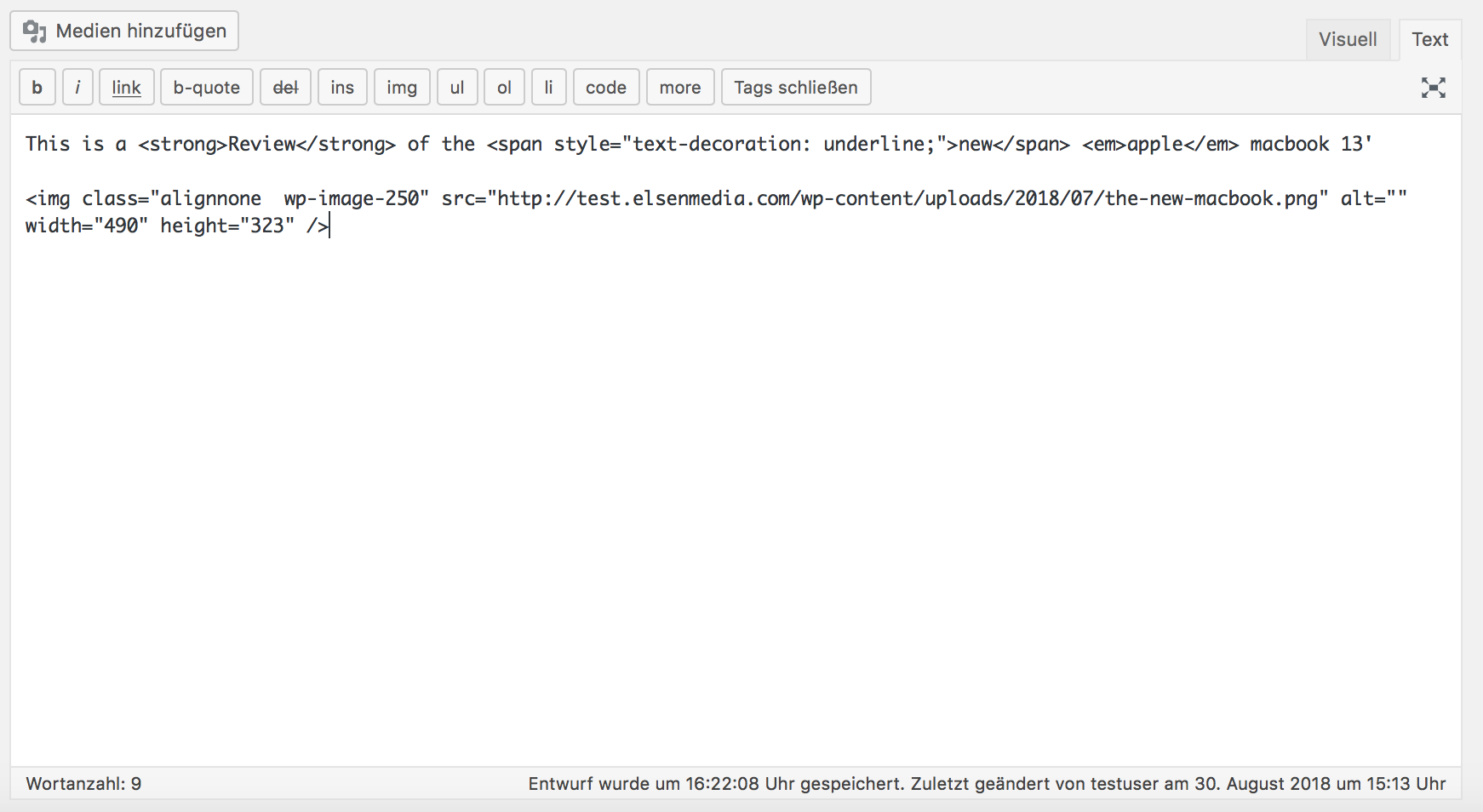 WordPress Text-Editor