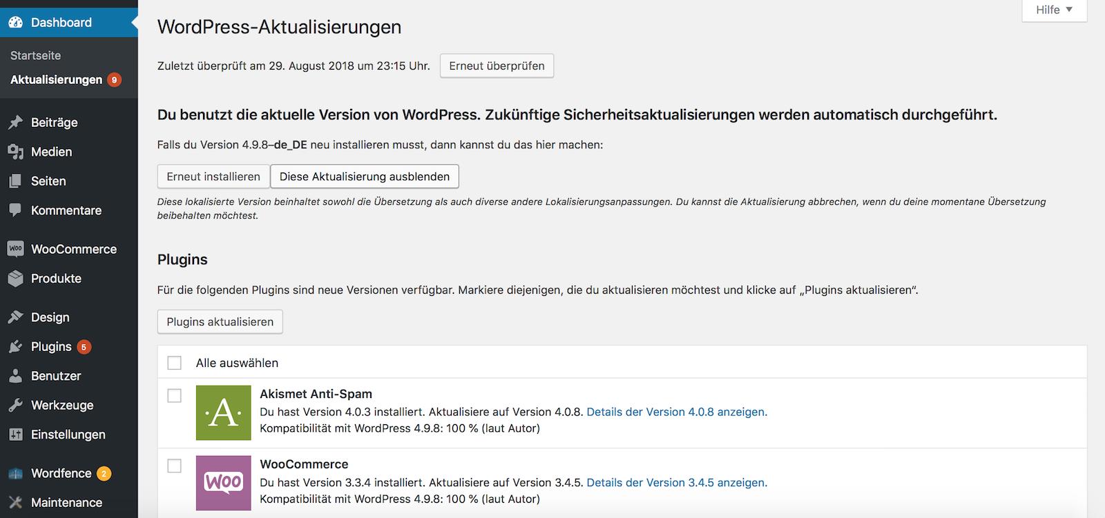 WordPress Update ausführen